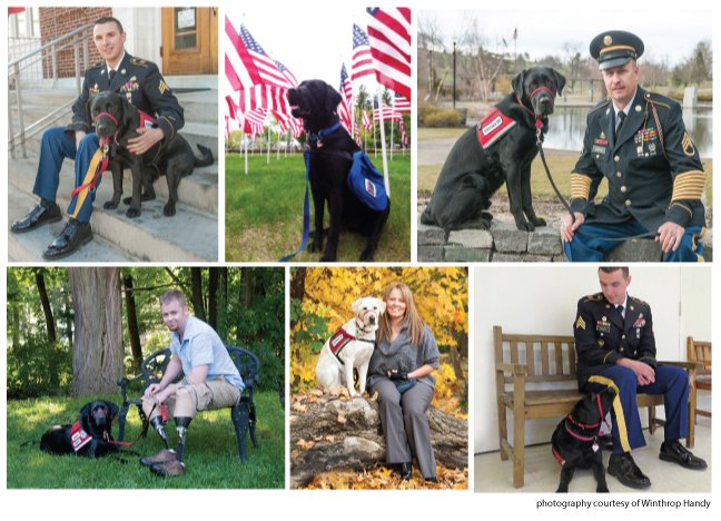 Veterans-pic-collage_0
