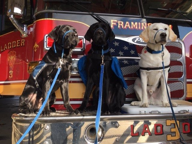 Gabriel in middle at Framingham Fire Station