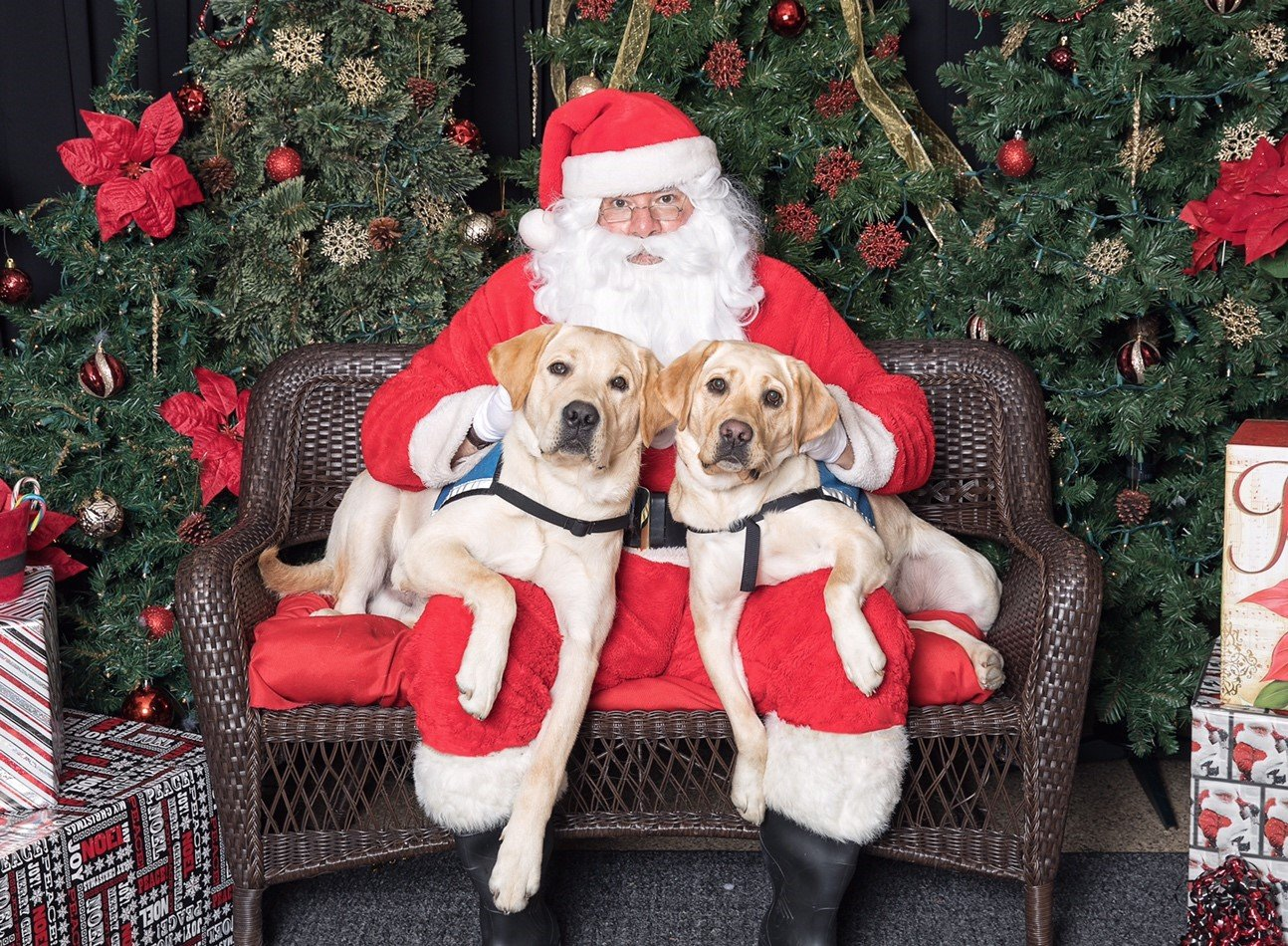 Christmas Fundraising Ideas.Fundraising Ideas Archives Neads World Class Service Dogs