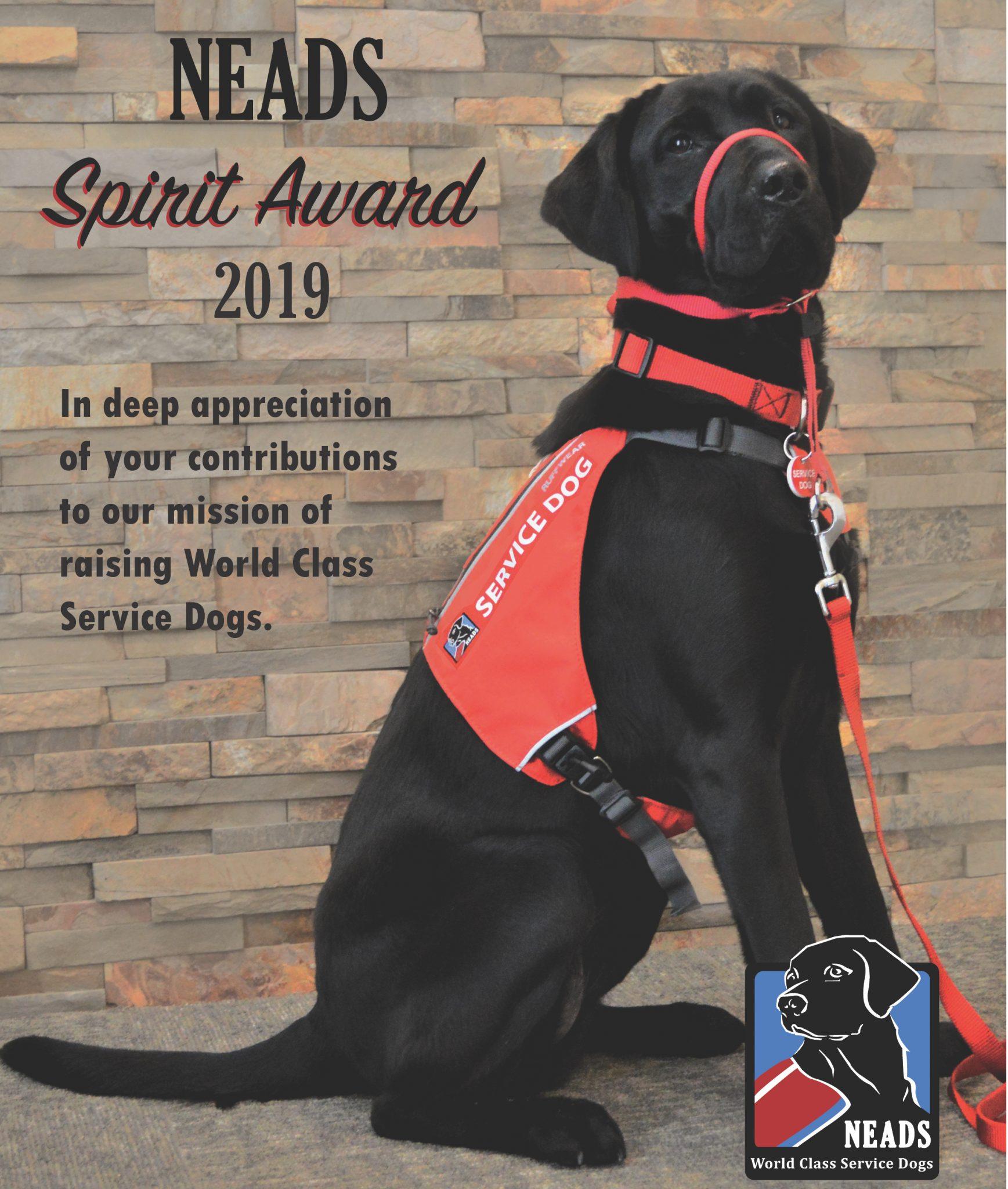 Spirit Award_2019