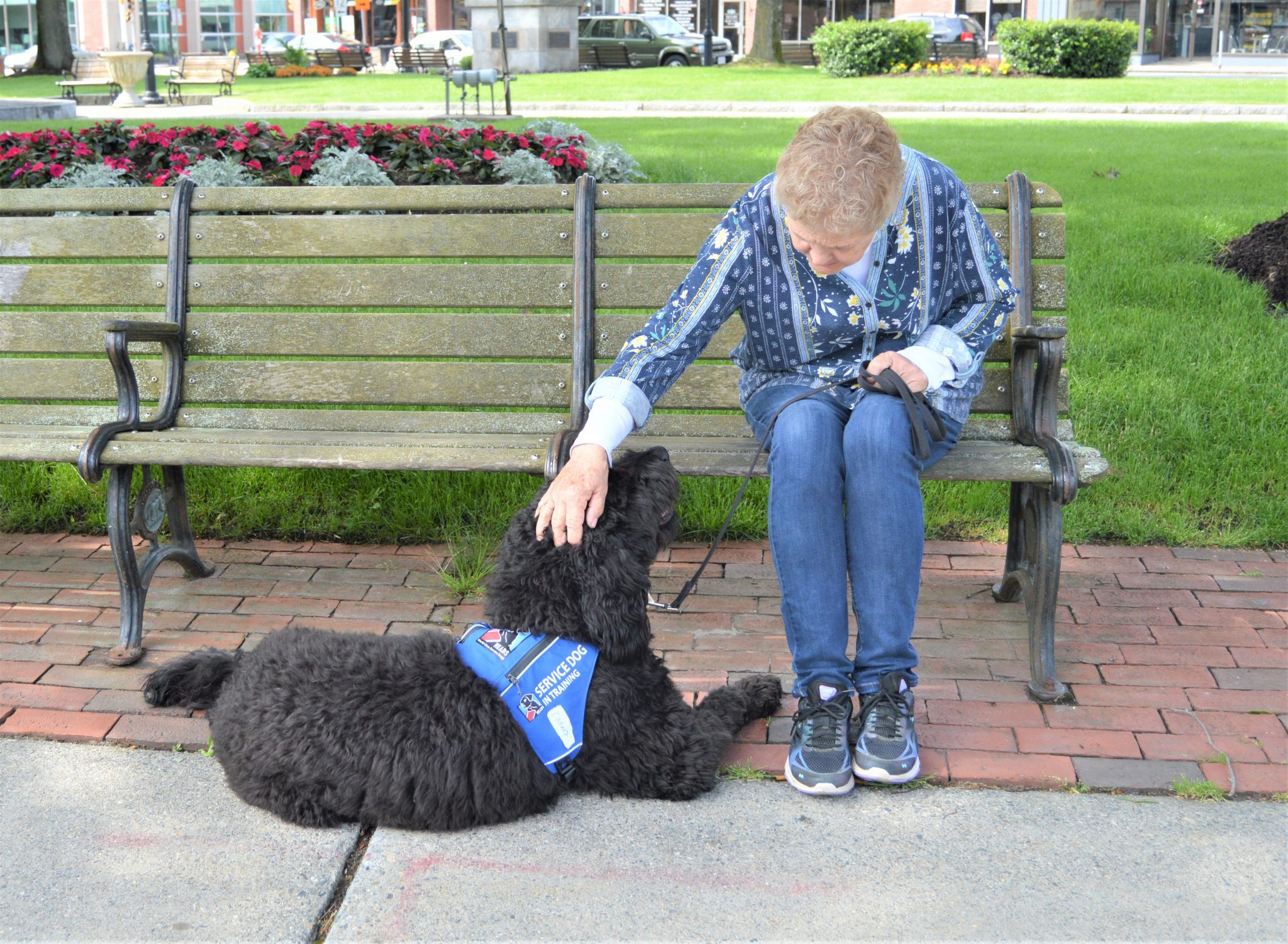 "Kathy offers a ""pet of encouragement"" to Champ."